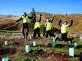 Freiwilligenarbeit in Australien